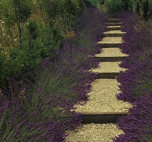 paths 35 Lovely Pathways for a Well Organized Home and Garden