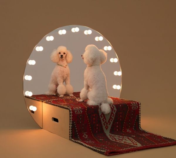 Famous Architecture Reinterpreted For Dogs (3)