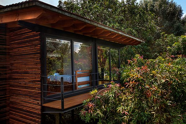 Balcony Private Garden in México Accommodating Four Wooden Houses