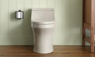 San Souci toilet