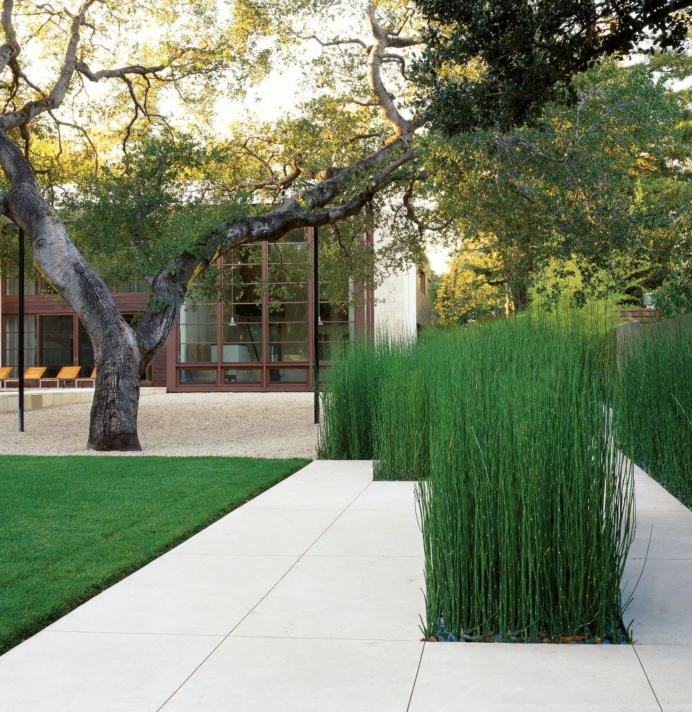 Contemporary garden by architectural digest ad for Modern garden