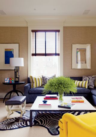 Contemporary Living Room by David Kleinberg Design Associates and David Kleinberg Design Associates in New York, New York