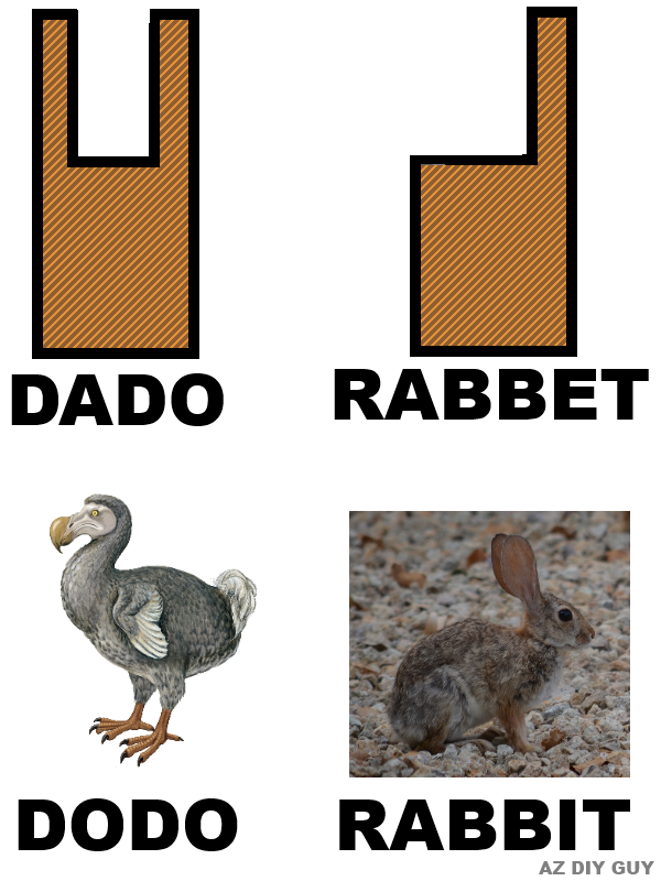 rabbet+rabbit.png