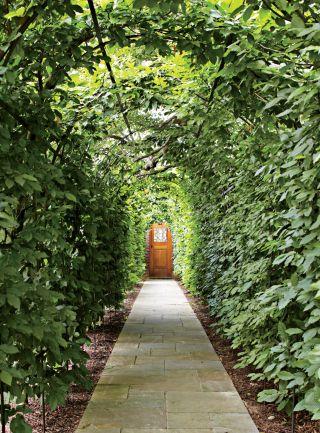Traditional Garden by David Kleinberg Design Associates and Atelier & Co in Philadelphia, Pennsylvania